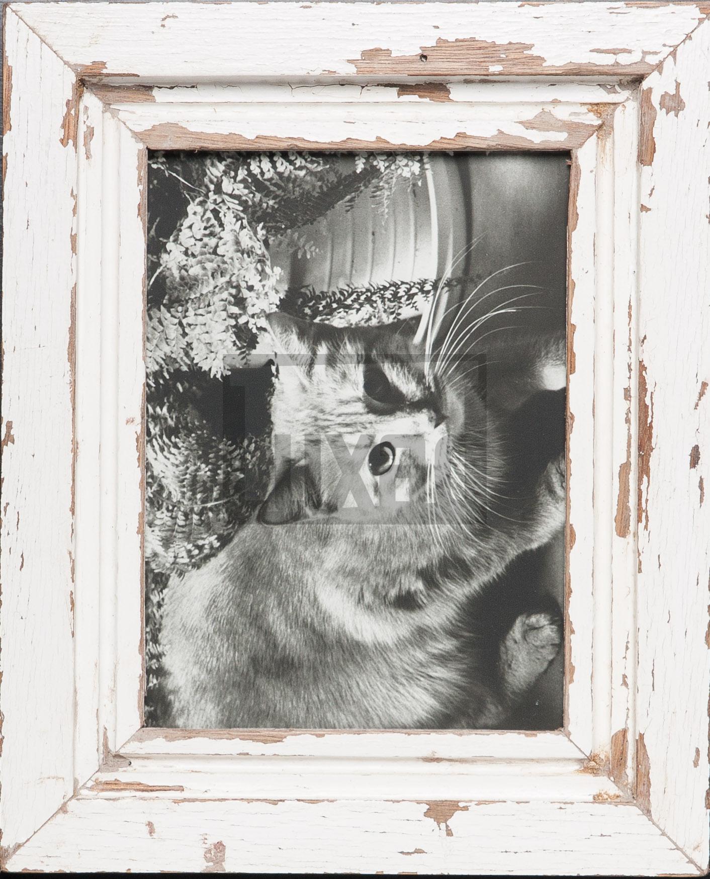 Vintage-Bilderrahmen für dein Lieblingsfoto